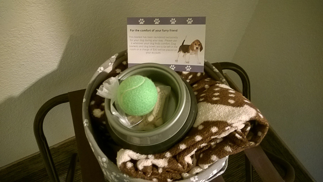 Hotel treat basket welcome gift for the dog
